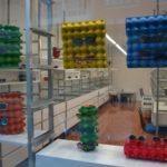 Escaparate original de primavera con cartones de huevos, idea de escaparate vista en óptica Veo Veo, imagen 5
